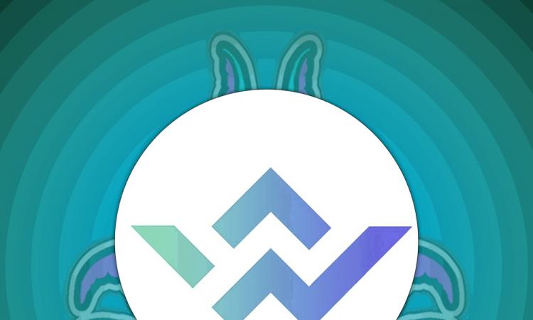 Westland-Storage-Bounty