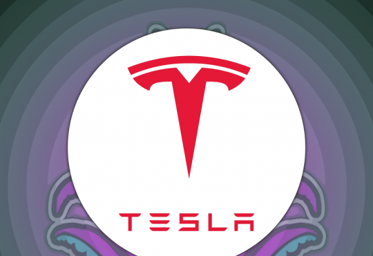 Elon Musk Joe Rogan Experience Weed