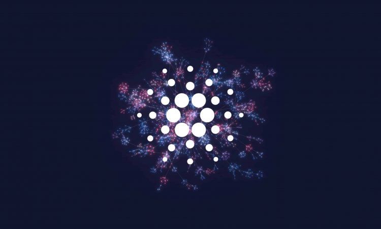 cardano address