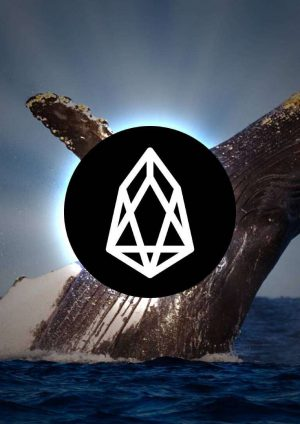 Addressing the EOS Whale in the Room